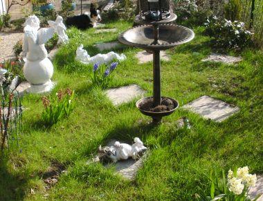 http://www.torindiegalaxien.de/Bilder-neu20-02-11/erde/chic-gart-o-2012.jpg