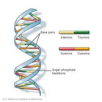 katalysieren definition biologie